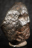 07125 - Fully Complete NWA L-H Type Unclassified Ordinary Chondrite Meteorite 8.9g