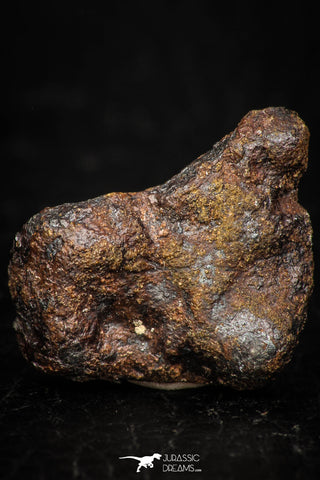 05392 - Agoudal Imilchil Iron IIAB Meteorite 8.3g Collector Grade