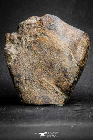 20096 - Huge Fully Complete NWA L-H Type Unclassified Ordinary Chondrite Meteorite 1133g