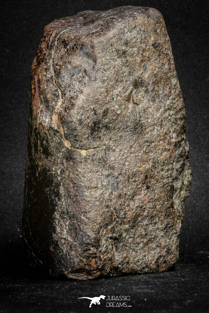 20097 - Huge Fully Complete NWA L-H Type Unclassified Ordinary Chondrite Meteorite 1251g