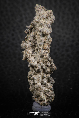"07303 -  Top Rare 2.02 Inch Fulgurite (""Petrified lightning"") Collected in Algeria"