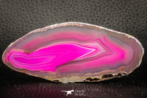 07320 - Beautiful 3.81 Inch Brazilian Agate Slice (Chalcedony Geode Section)