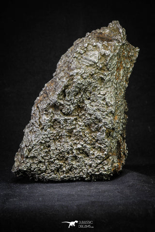 21258 - New Unpublished Complete Iron IAB Meteorite 2553g Fallen in Algeria