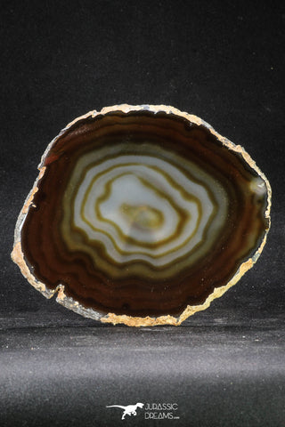 20257 -  Extremely Beautiful 5.46 Inch Brazilian Agate Slice (Chalcedony Geode Section)