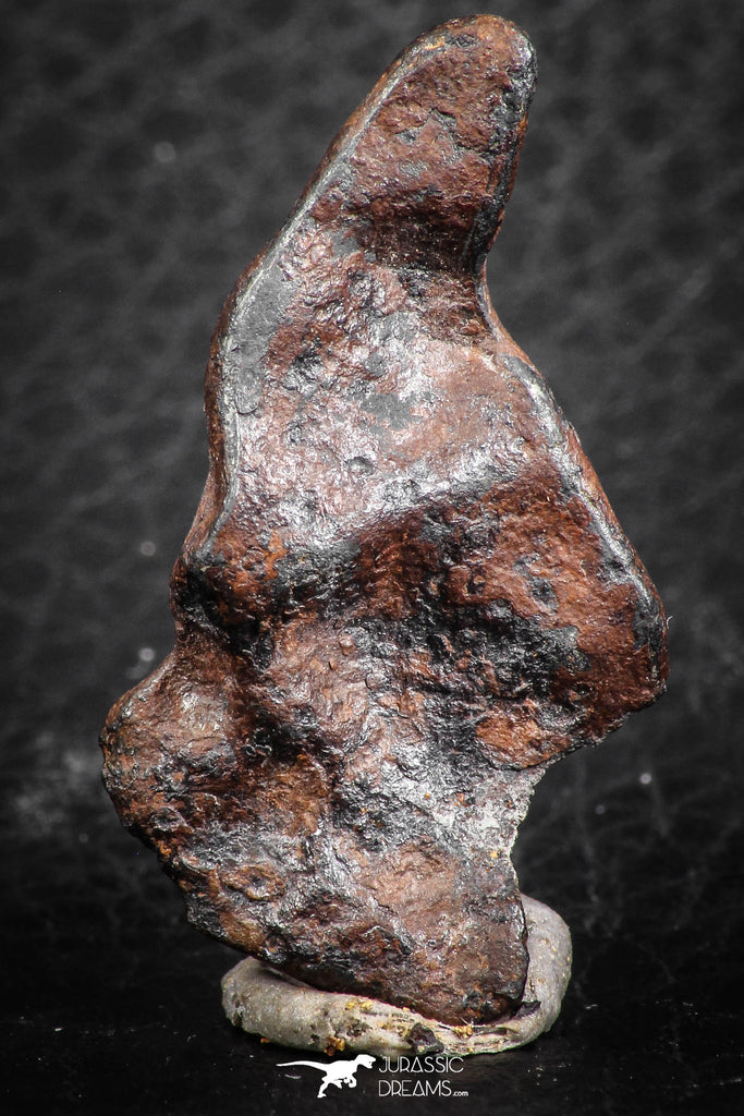 07421 - Agoudal Imilchil Iron IIAB Meteorite 12.0g Collector Grade