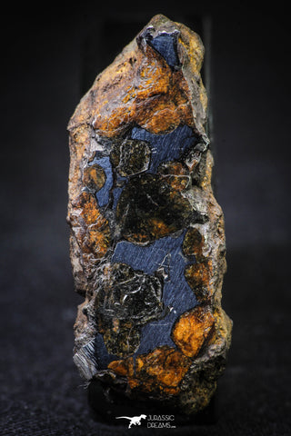 21380 -  Sericho Pallasite Meteorite Polished Section 23.1g Fell in Kenya
