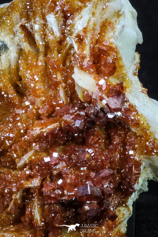 20338 - Beautiful Red Vanadinite Crystals on Barite Mibladen Mining District, Morocco