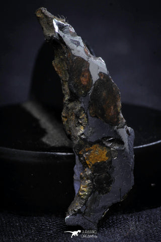 21404 - Sericho Pallasite Meteorite Polished Section 3.6g Fell in Kenya
