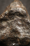 07527 - Fully Complete NWA L-H Type Unclassified Ordinary Chondrite Meteorite 9.0g