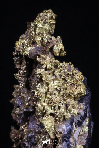 20477 - Top Beautiful Native Gold In Its Hydrothermal Quartz Matrix New Location Aouserd Occidental Sahara