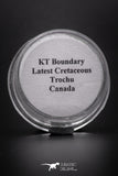 04112 - K/T Boundary Sample Latest Cretaceous Trochu Canada Dinosaur Extinction