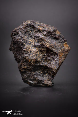 04418 - Unclassified NWA 31 g Chondrite L-H Type Meteorite Sahara Fall
