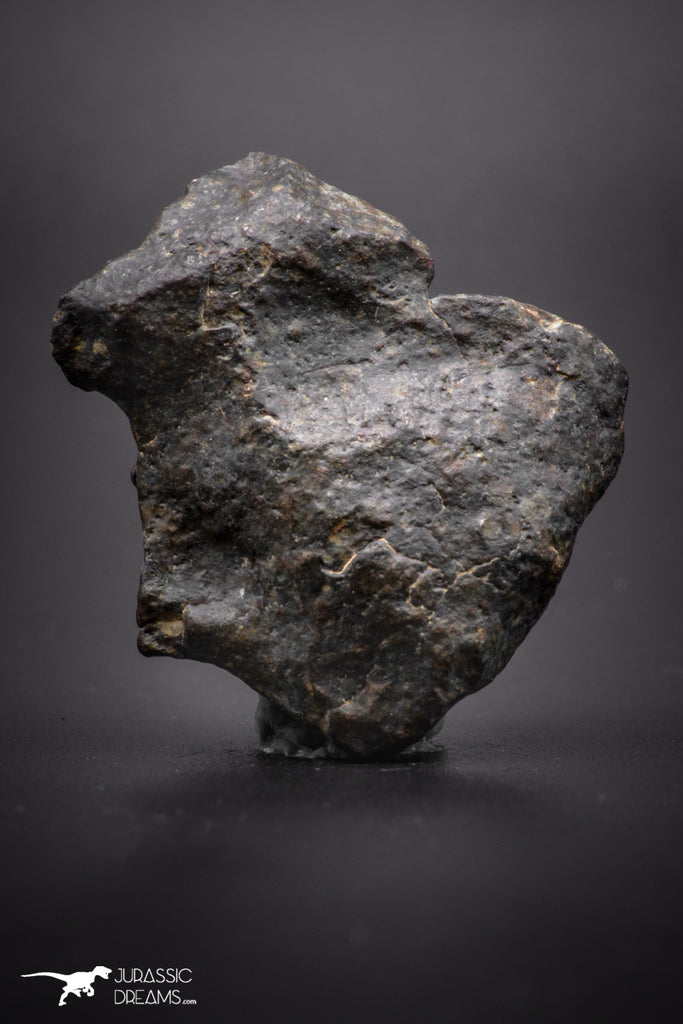 04410 - Unclassified NWA 20 g Chondrite L-H Type Meteorite Sahara Fall