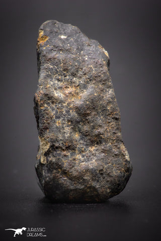 04422 - Unclassified NWA 16 g Chondrite L-H Type Meteorite Sahara Fall
