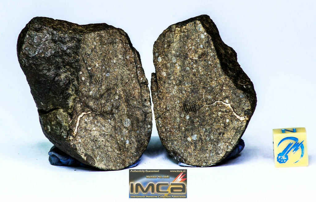 Maxim Davgalev Order. Lot of ordinary chondrites meteorites