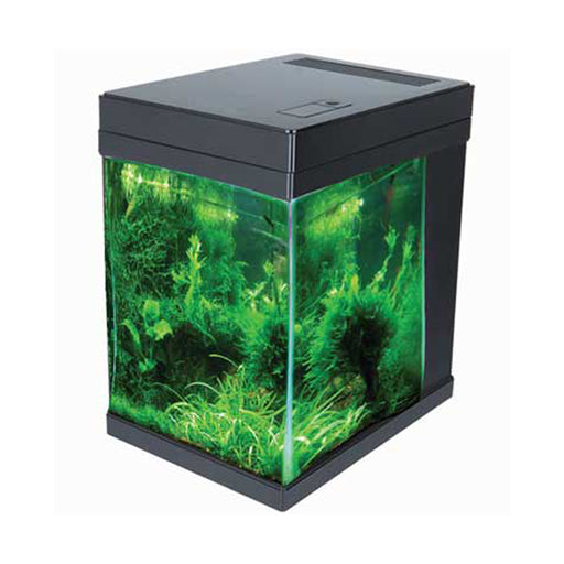 JBJ 3G Black Mini Cubey Aquarium w/remote MT-208DX-B