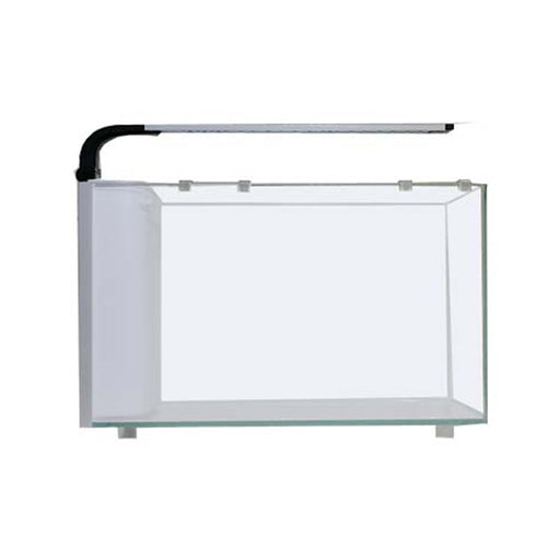 6G Rimless Desktop Curved Glass Aquarium w/7W LED