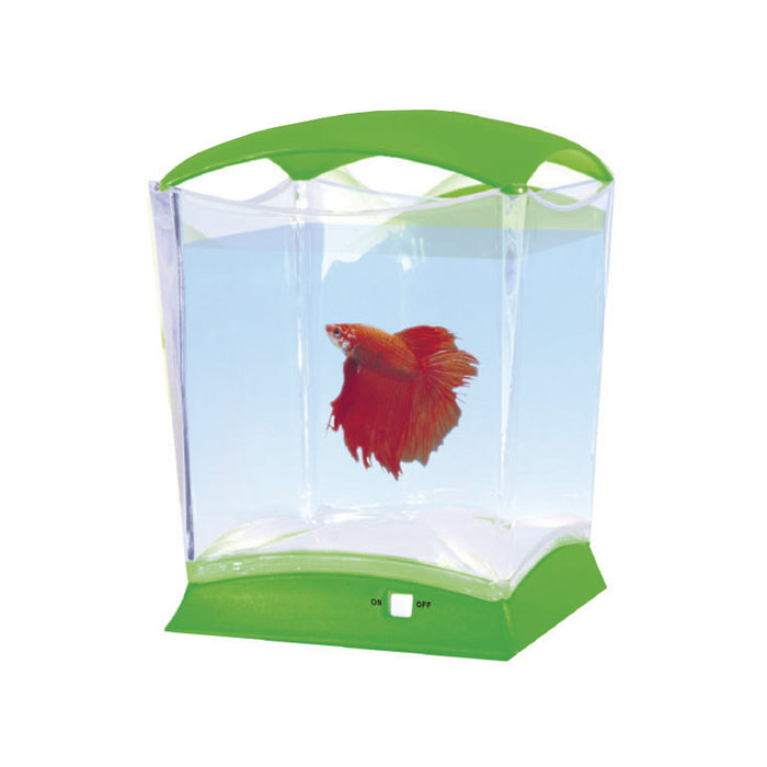 Neon-Betta Aquariums
