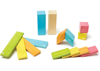 Tegu Magnetic Wooden Blocks 14pc Tint Set