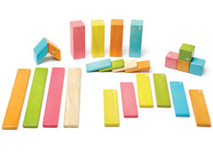 Tegu Magnetic Wooden Blocks 24pc Tint Set