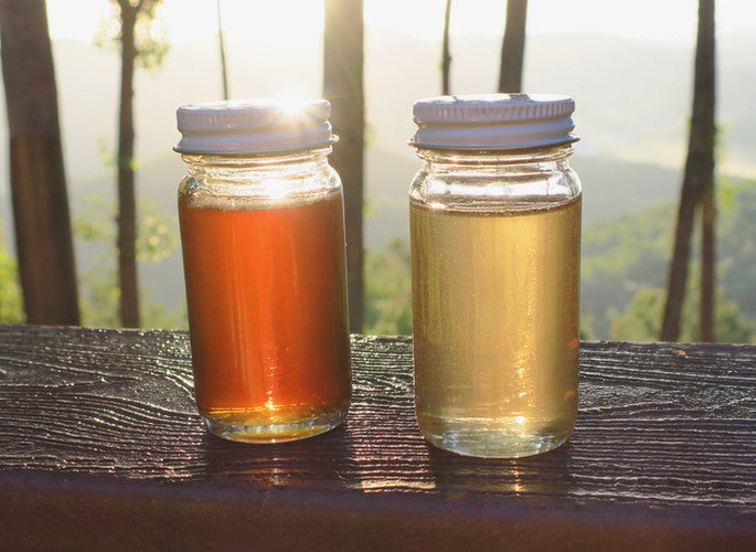 Why Is Sourwood Honey So Unique?