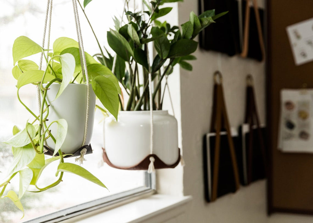 Indoor Hanging Leather Plant Hammock