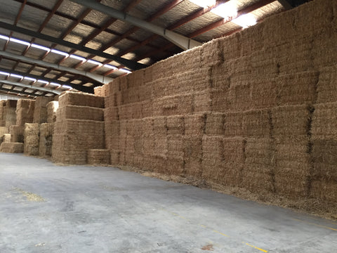 Ryegrass/Barley/Wheat straw available NOW