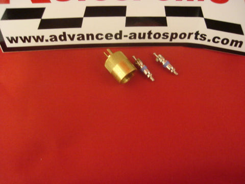 Replacement Schrader Valve & Cap for Fuel Sample Port