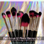 PRO STAR 12 Piece Brush Set