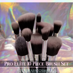 PRO ELITE 10 Piece Brush Set