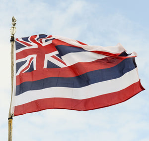 Hawaii Flags by USA Flag Co.