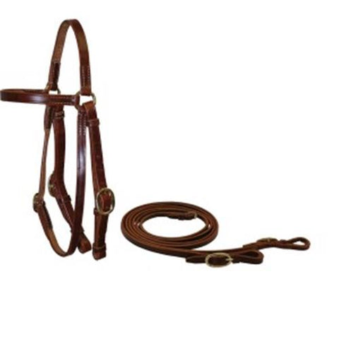 Ord river Oiled Pull Up 3/4 Shetland Barcoo Bridle