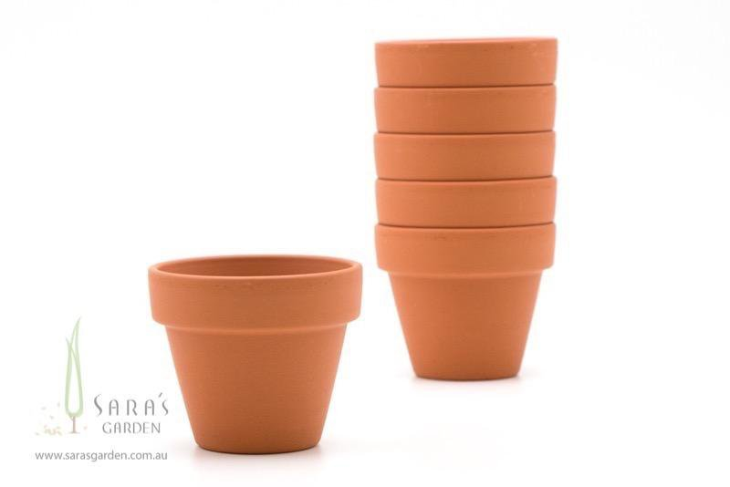 Mini Terracotta Pot