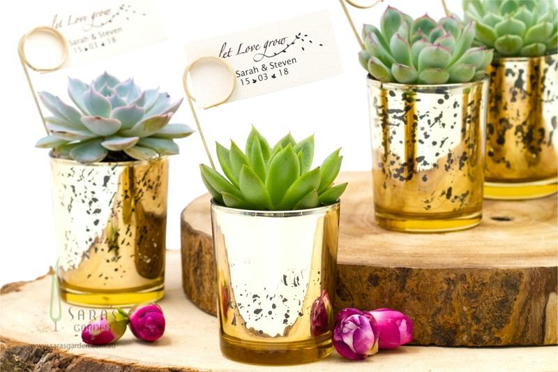 Succulent in Gold Mercury Pot