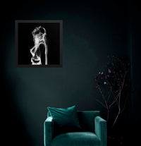Studded Dreams by Jivomir Domoustchiev Framed Art Print
