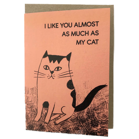 Snail Mail Paper Goods I Like You Cat Card