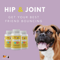 Advanced Hip & Joint