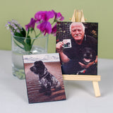Pet Portrait Mini Canvas and Stand - Afewhometruths