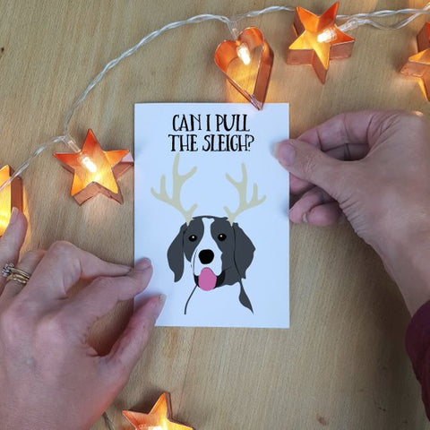 Personalised Pet Christmas Cards (Set of 5) - Afewhometruths