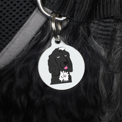 Personalised Dog ID Tag - Afewhometruths