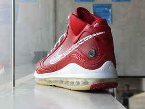 Nike Lebron 7 Big Apple Promo Sample
