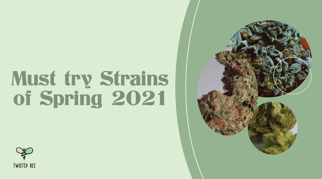 Top Spring Cleaning Strains 2021