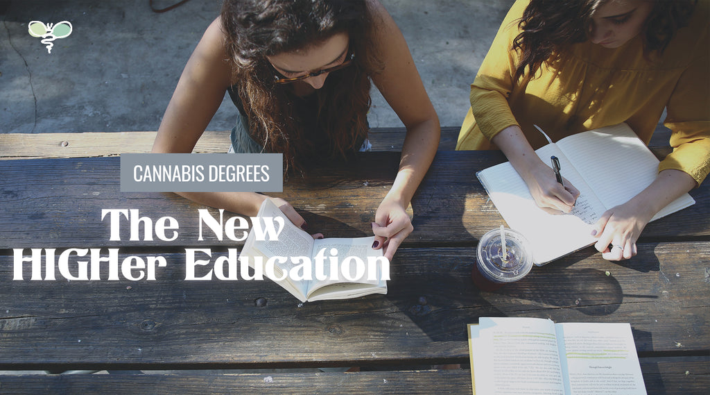 Cannabis Degrees: The new HIGHer Education