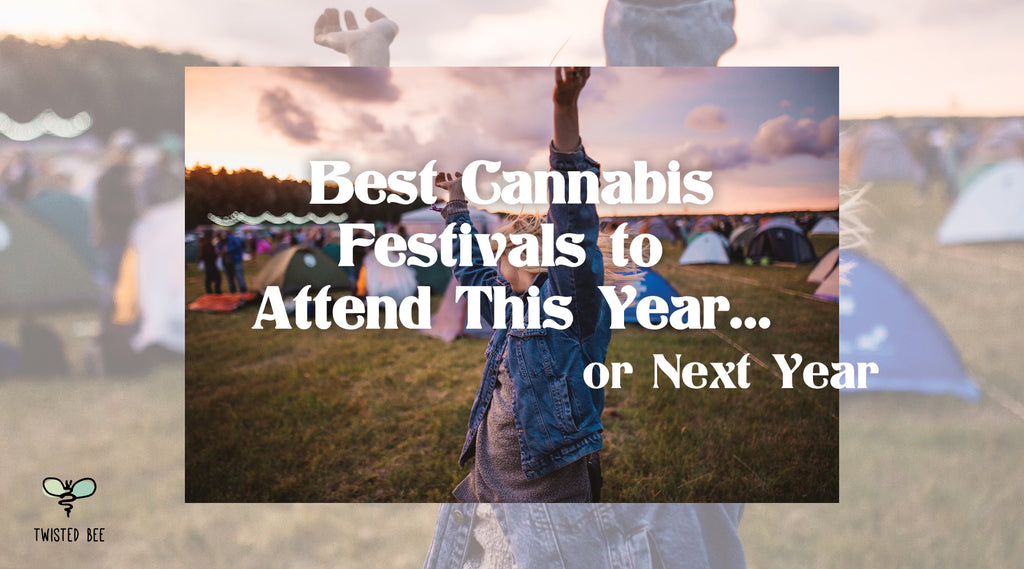 Best Cannabis Festivals to Attend This Year... or Next Year