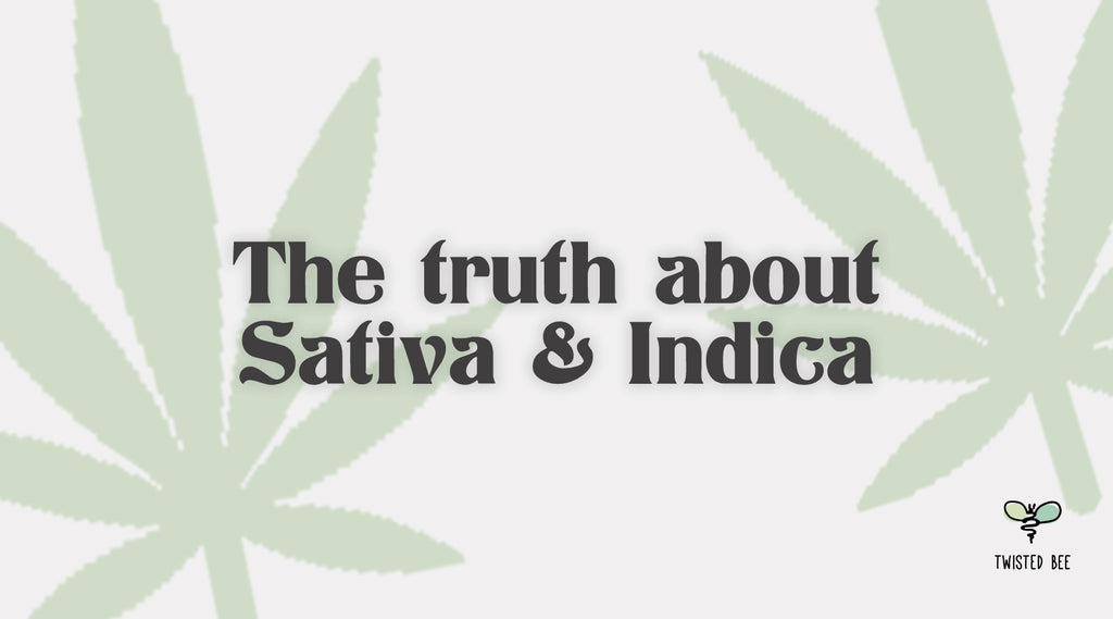 The Truth About Sativa & Indica