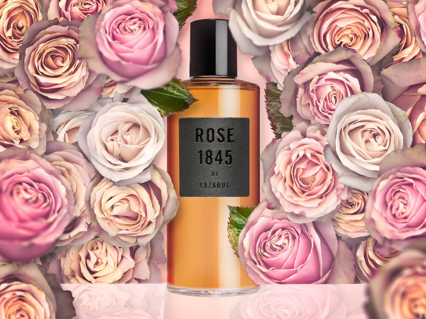 Rose Extract Shampoo