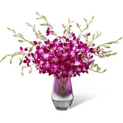Pink at Heart Orchid Bouquet