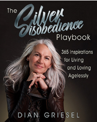Dian Griesel The Silver Disobedience Playbook