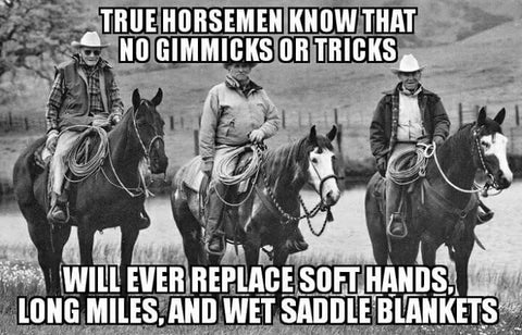 Saddle Quote From Pinterest