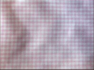 Rockmount Ranch Wear Womens Gingham Check Short Sleeves Pink Fabric